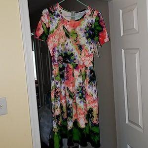 Gorgeous Brand new XL Lularoe Amelia Dress